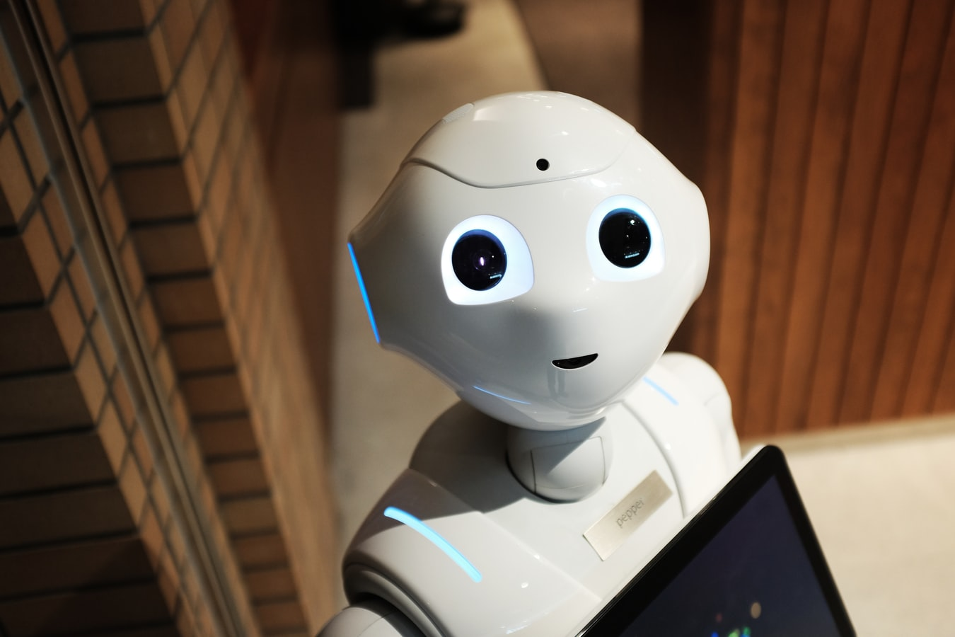 Read more about the article Why You Should Hire A Robot For Small Businesses
